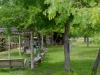 29. Arbor Swings